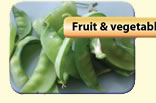 Fruit & Vegetable Waste